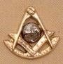 Past Master Lapel Button in 14K YG & WG