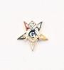 Eastern Star Patron Lapel Button in 14K YG with colored enamel and 1 pt diamond