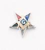 Eastern Star Patron Lapel Button in 14K WG & YG with stone points