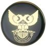 Scottish Rite Wings UP auto emblem