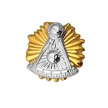 Past Master Lapel Pin  10K YG & WG