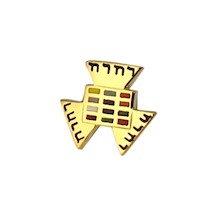 Past High Priest Lapel Pin 10K YG
