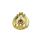 Past Potentate Lapel Pin