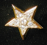 OES Assoc. Patron Charm Goldtone