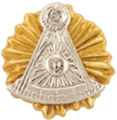 Past Master Lapel Button in 10K YG & WG with diamond