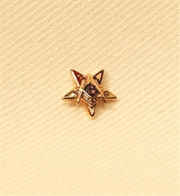 Eastern Star Patron Lapel Button in 14K YG with colored enamel